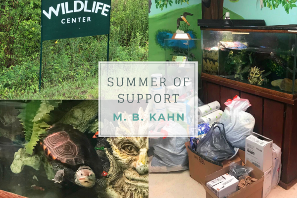 Summer of Support Helps Wildlife